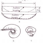 geliu-schema1