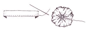 geliu-schema3