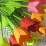 popierines-tulpes16